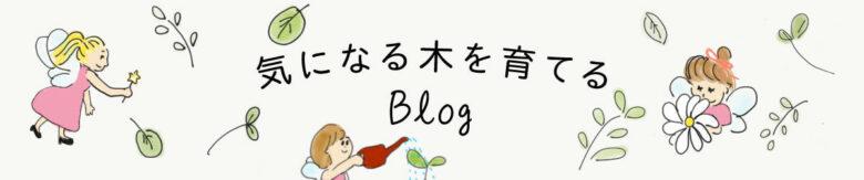 気になる木を育てるブログ